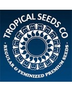 Tropical Seeds CO. Semillas Feminizadas