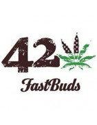 Fast Buds American Autoflowers Seeds