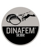 Dinafem Seeds - Full Seed catalogue