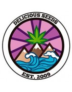 Produits Delicious Seeds