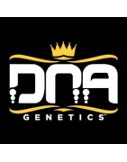 DNA Genetics - Entire Seed Catalogue