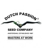 Dutch Passion - Full Seed Catalogue