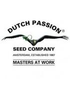 Productos Dutch Passion