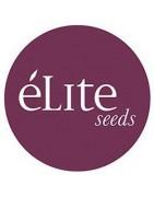 Productos Élite Seeds