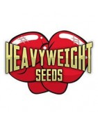 Heavyweight Seeds. Gran banco de semillas