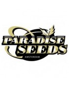 Paradise Seeds | Full Seed Catalogue