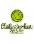 Productos Philosopher Seeds