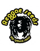 Reggae Seeds Full Seed Catalogue