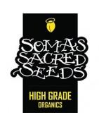 Soma Sacred Seeds. Catálogo de feminizadas