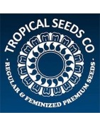Tropical Seeds. Landraces regulares con clase