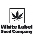 Productos White Label Seeds