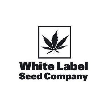 White Label Seeds Products