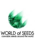 Produits World of Seeds
