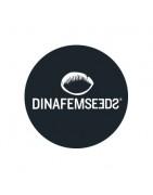 Dinafem Féminisée