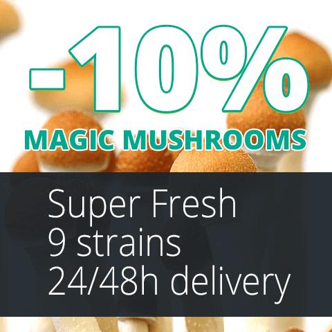 Banner Mushrooms